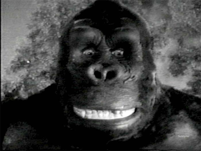 Prazer, Kong. King Kong.